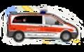 Gießen 11/82-1 - Notarzteinsatzfahrzeug Lich